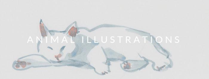 YukoOharaArt_Animal Illustrations