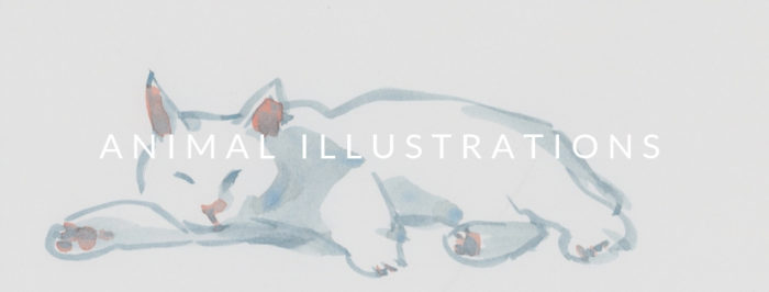 YukoOharaArt_Animal Illustrations